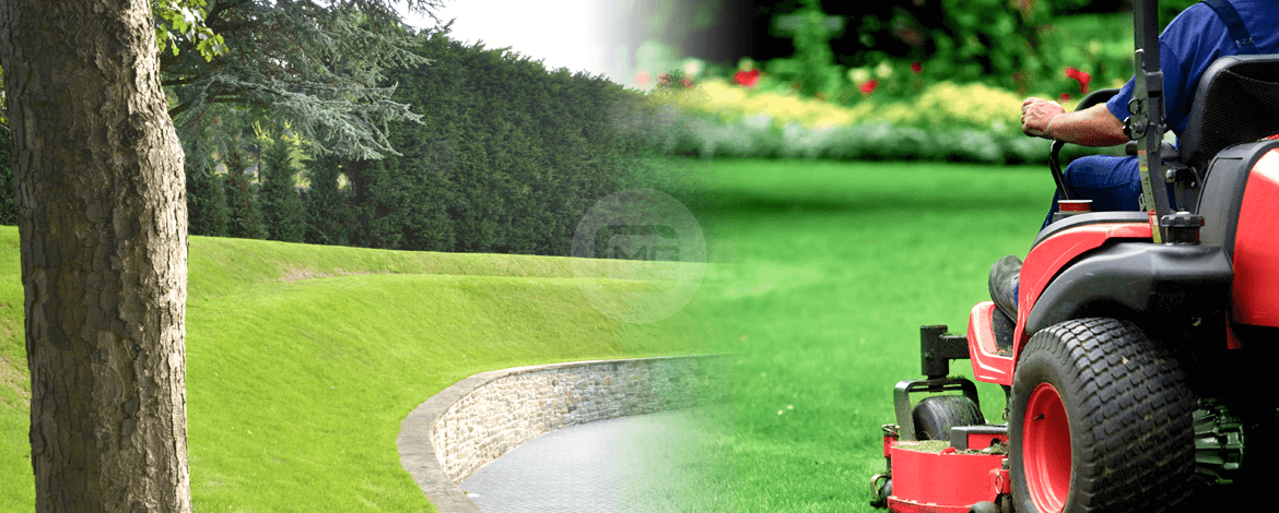 Go to Guide for Garden and Lawn Maintenance