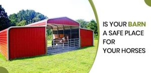 is-your-barn-a-safe-place-for-your-horses